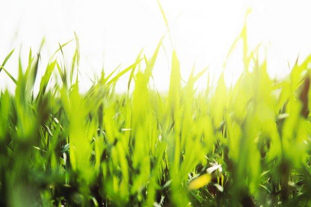 Stap nu over op energiecoöperatie HWDuurzaam | om